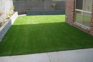 Lawn 14_andy man