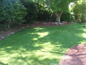 Lawn 16_andy man