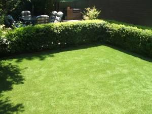 Lawn 17_andy man
