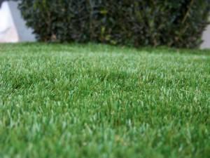 Lawn 3_andy man