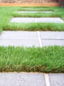 Lawn 8_andy man