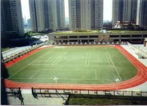 wang-jing school