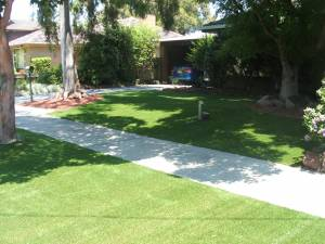 Lawn 15_andy man