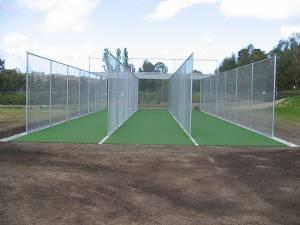 cricket-2082